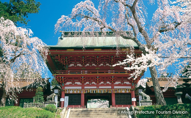 popular recommended destinations miyagi prefecture popular recommended